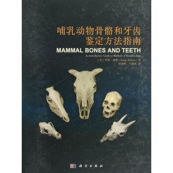 哺乳动物骨骼和牙齿鉴定方法指南(精)【图片 价格