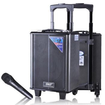 先科(SAST) 天韵5号 单8英寸拉杆音箱 户外便携式音响/大功率录音扩音器