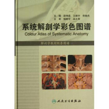 系统解剖学彩色图谱解剖学教材配套图谱精