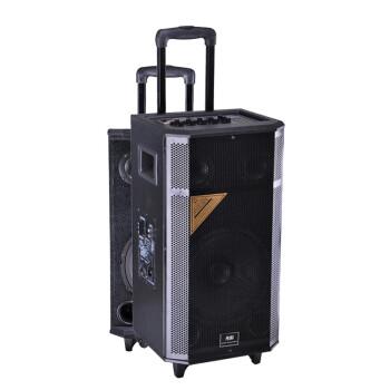 先科(SAST) 天韵4号 单10寸拉杆音箱 户外便携式音响/大功率录音扩音器