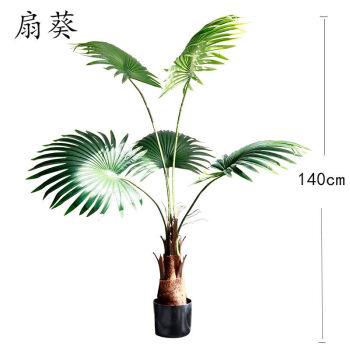 岳阳海枣树价格_仿真海枣树厂家_海枣树