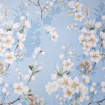 北极绒 全棉床单单件 纯棉被单单人床罩席梦思保护套 秋水伊人160*230cm 0.9/1.2/1.35米床