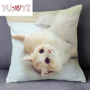 yi) 呆萌可爱宠物小猫咪狗狗动物图案抱枕定制来图定做照片沙发靠垫背