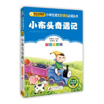 小布头奇遇记/小学生语文新课标必读丛书 电子版