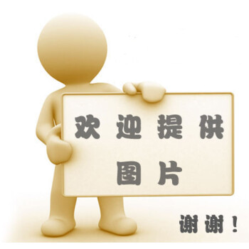 临床应用解剖学 刘荣志,陶俊良9787534943447河南科学技术出版