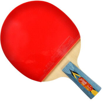 红双喜直拍双面反胶乒乓球拍攻守平衡型 A3006
