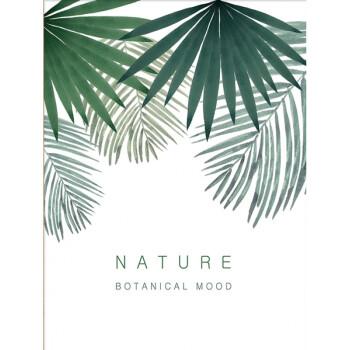 花明柳媚棕榈叶龟背竹水彩绿植手绘叶子装饰画北欧挂画美式夏日风墙画
