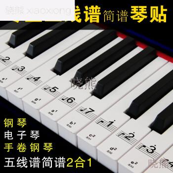 骁熊88键透明钢琴键贴纸61电子琴键盘手卷钢琴键贴五线谱简谱 白键图片