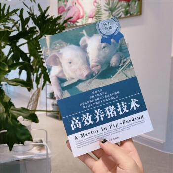 韩国ins创意表情包笔记本简约日记本记事本手帐本 养猪技术本图片