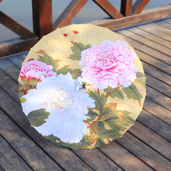 工艺古风油纸伞油纸伞摄影纯色走秀透明创意防雨古典古装传统花伞手绘