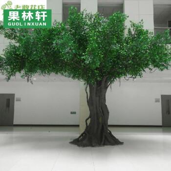 摄影树风景作品_风景假树_风景速写树