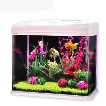 鱼缸水族箱小乌龟小金鱼观赏鱼小鱼缸mini养鱼斗鱼草缸生态瓶玻璃缸