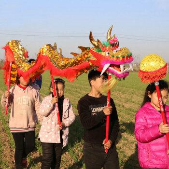手工儿童款舞龙表演道具舞狮舞龙幼儿园中小学生舞龙龙狮整套 总长9米