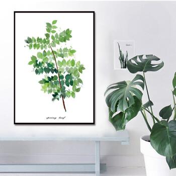 ins北欧风绿植装饰画客厅餐厅卧室简约挂画美式小清新