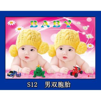 龙凤宝宝海报照片画报漂亮可爱男婴儿画双胞胎教早教超大图片墙贴 s12