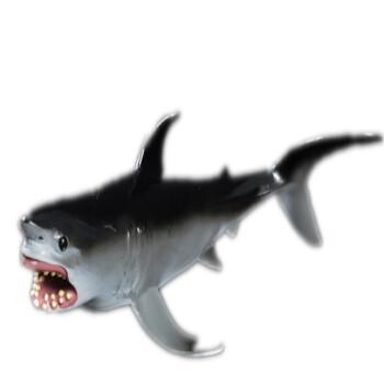 仿真海洋动物模型锤头鲨双髻鲨 抹香鲸美人鲸巨齿鲨海底世界模型 大