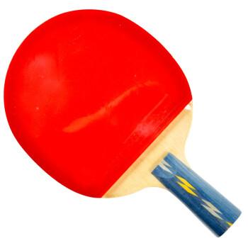 红双喜DHS E-E406直拍双面反胶乒乓拍竞技型
