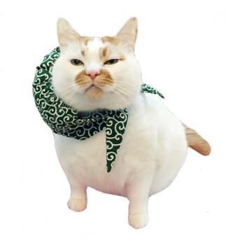宠物楼楼猫抱枕 小猫咪狗狗异形抱枕方形圆靠垫diy生日礼物 单面印