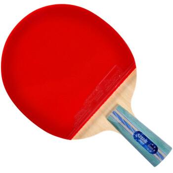 红双喜直拍双面反胶乒乓球拍弧圈结合快攻5星送新软体弹力拍套X5006(A5006)