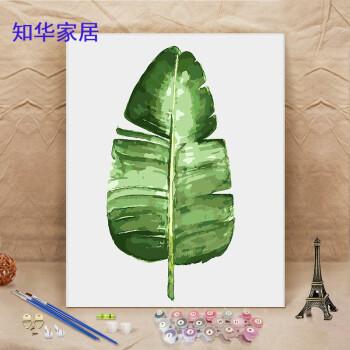 diy数字油画数学装饰画手绘填色画绿色植物减压画时尚家居用品 墨绿色