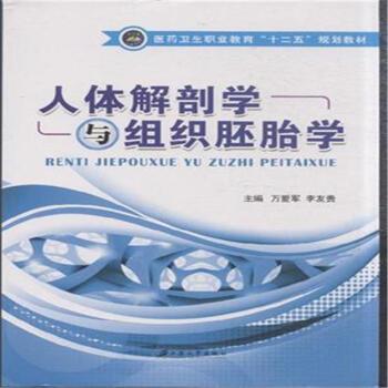 人体解剖学与组织胚胎学