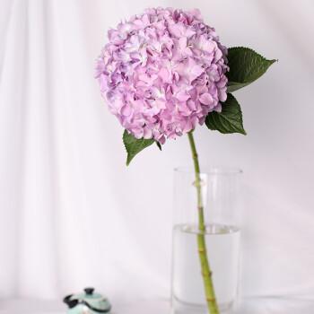 斗南花乡 绣球鲜花批发鲜花速递包月花束家庭插花生日