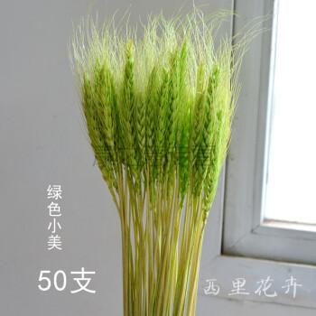 【麦穗50支一束】天然干花室内装饰大麦花束小麦拍摄道具家居艺术