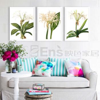 彩铅手绘有框装饰画 卧室餐厅背景墙挂画壁画杜雷德植物花草 一套三幅