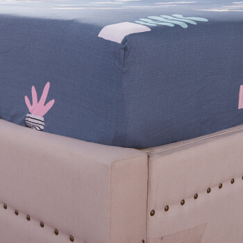 艾薇 床笠 全棉床笠单件 席梦思保护套 床罩床套床垫罩 莱迪 180*200cm