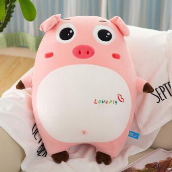 猪抱枕及软毛绒玩具可通公仔生日礼物情人节礼物送女朋友 大眼呆萌 40