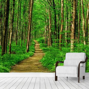 3d大自然风景森林墙纸延伸空间墙布餐厅主题酒店沙发背景植物壁纸