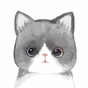 数字油画动物卡通呆萌猫咪填色手绘画客厅装饰画三拼三联 灰色 60*60