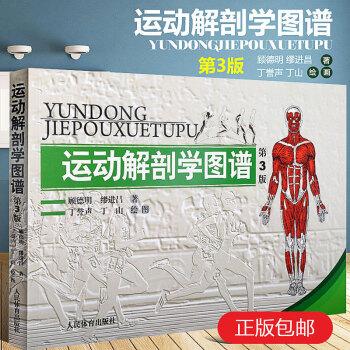 《 运动解剖学图谱修订第3版 肌肉塑造教程全书 人民体育健身书医学彩色图谱健美训练图解 顾德明 医学