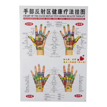 挂图标准人体经络全图经络图全套7张保健按摩反射区挂图汉英对照 手部