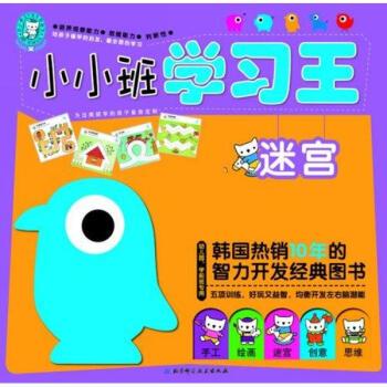 小小班学习王:迷宫(幼儿园,学前班专用) [3-6岁]