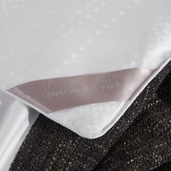 太湖雪 被芯家纺 100%桑蚕丝被 优质长丝填充 灯笼格全棉提花 子母被 四季被 白色 净重2+4斤 220*240cm