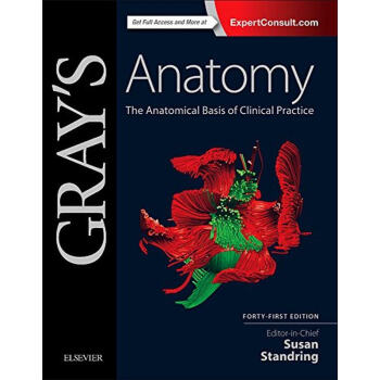 Gray's Anatomy: The Anatomical Basis of Clini