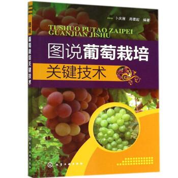 《图说葡萄栽培关键技术 葡萄栽培种植大全 高效种植致富直通车 果树大棚种植种葡萄书籍》