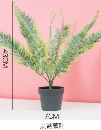 仿真植物盆栽绿植摆件ins北欧风创意家居客厅房间装饰