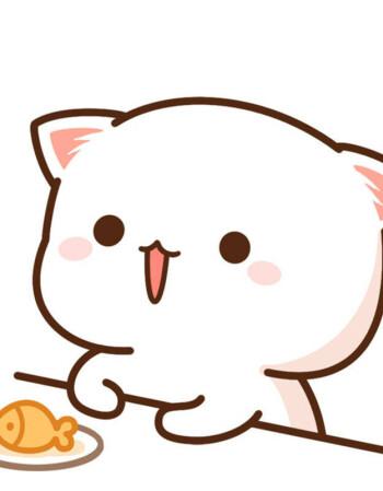 蜜桃猫情侣装t恤衣服微信qq表情包图案可爱礼物学生男女朋友短袖 12
