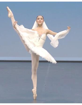色色成人体网_芭蕾舞成人裙芭蕾舞蹈裙纱裙白蓬蓬天鹅湖专业体演出表演比赛服 黄色
