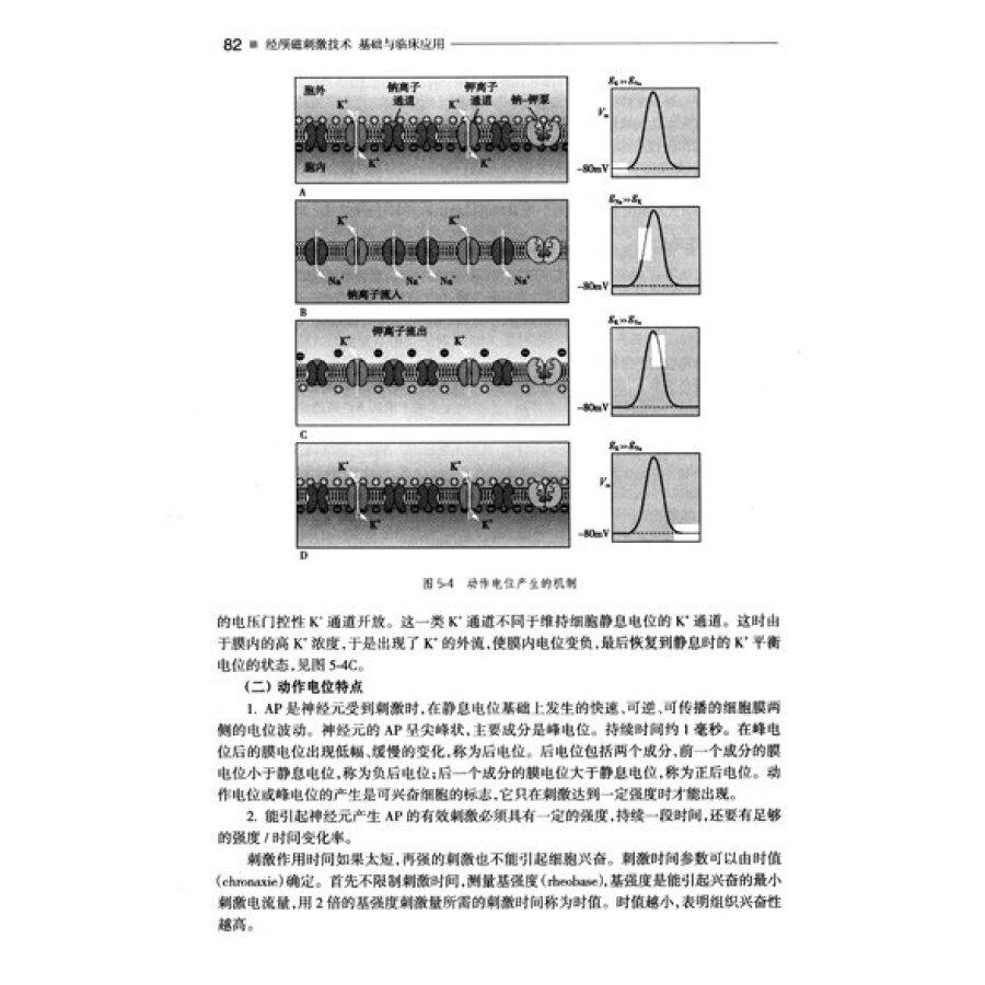 四,经颅磁刺激与电磁学 第二节 经颅磁刺激的技术原理 一,电路与结构
