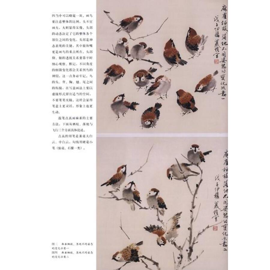 写意花鸟画技法·老年国画大学堂:麻雀 燕子