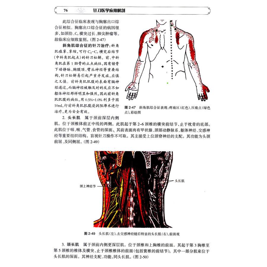 二,颅面部的关节 第三节 颅面部的软组织结构与层次 一,颅部软组织