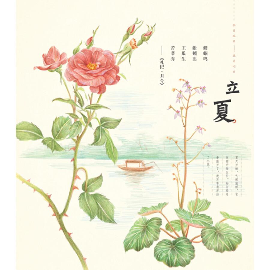 花之绘2:二十四节气花卉的色铅笔图绘