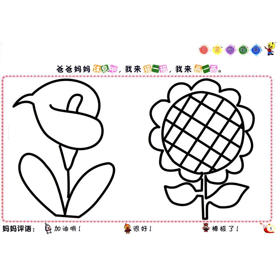 天才豆启蒙简笔画:动物植物