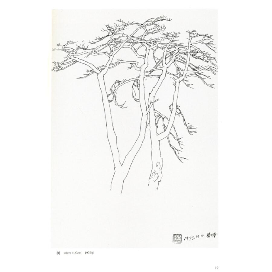 芍药铅笔画