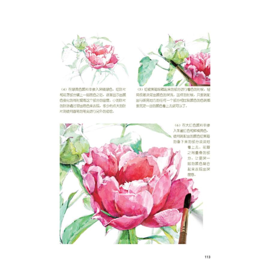 水彩画手绘教室:花卉篇