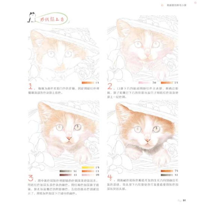 绘画 彩铅/铅笔画 猫咪绘2:邂逅32只天使萌猫