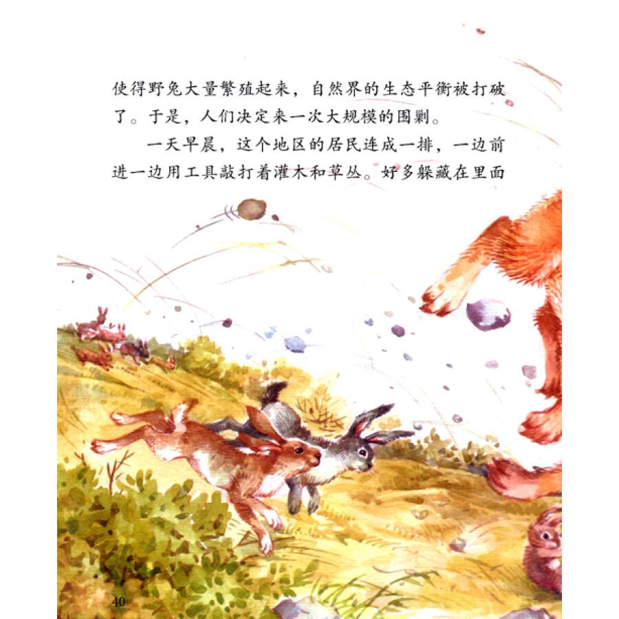 西顿动物故事(低幼版)(5):小战马图片
